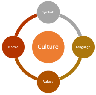 Basic Elements of Culture and Features