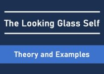 The Looking Glass Self Cover Image