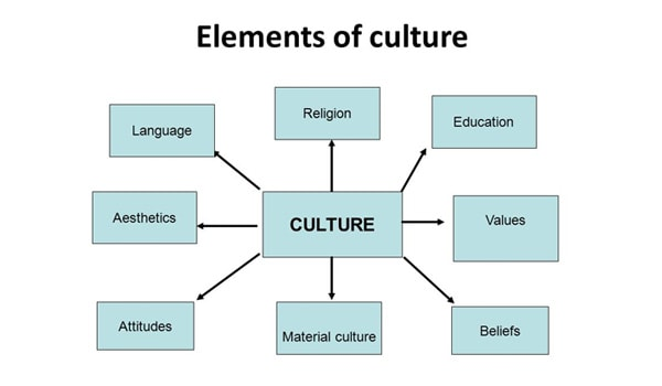elements of culture